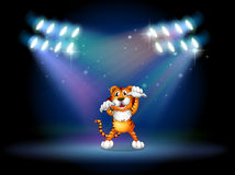 A tiger raising her hands at the stage under the spotlights Royalty Free Stock Image