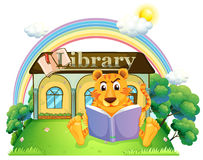 A tiger reading a book outside the library Royalty Free Stock Photos