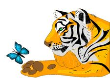 Tiger releases for free butterfly Royalty Free Stock Photo