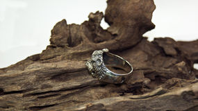 Tiger ring Royalty Free Stock Images