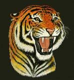 Tiger roar drawing Stock Photos