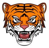 Tiger roar Royalty Free Stock Photo