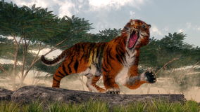 Tiger roaring - 3D render Royalty Free Stock Photos