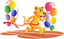 A tiger running with colorful balloons Stock Photo