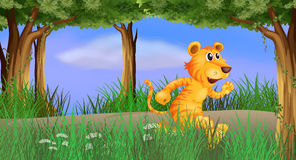 A tiger running in the forest Stock Image