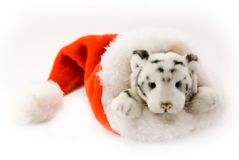 Tiger in Santa cap Royalty Free Stock Photography