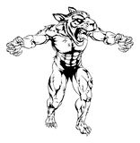 Tiger scary sports mascot. An illustration of a Tiger scary sports mascot with claws out Royalty Free Stock Image