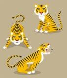 Tiger set 1 Royalty Free Stock Photos
