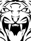 Tiger. Sign illustrator design .eps 10 Stock Photo