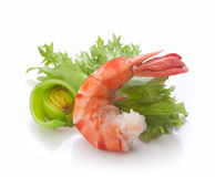 Tiger shrimp Royalty Free Stock Image