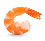 Tiger Shrimp Crevette rose d'isolement sur un fond blanc photo stock
