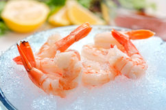 Tiger Shrimp on Ice. A group of tiger shrimp on a bowl of ice with lemons, greens, and seafood sauce Royalty Free Stock Photos