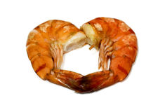 Tiger shrimp isolated Royalty Free Stock Photo