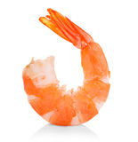 Tiger shrimp. Prawn isolated on a white background. Royalty Free Stock Image