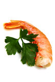 Tiger shrimps Stock Photo