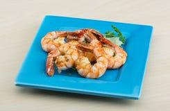 Tiger Shrimps Foto de archivo libre de regalías