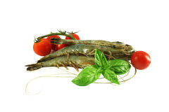 Tiger shrimps, basil, tomatoes Stock Images