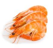 Tiger Shrimps Crevettes roses avec d'isolement sur un fond blanc Photographie stock libre de droits