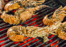 Tiger shrimps food barbecue Royalty Free Stock Photo