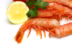 Tiger shrimps with lemon Stock Images