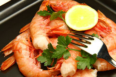 Tiger shrimps with lemon Stock Photography