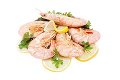 Tiger shrimps with lemon slice and parsley Stock Images