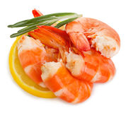 Tiger shrimps with lemon slice and rosemary. Prawns with lemon slice and rosemary isolated on a white background. Seafood. Tiger shrimps with lemon slice and Stock Image