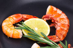 Tiger shrimps Stock Photography