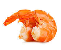 Tiger shrimps. Prawns isolated on a white background. Seafood. Tiger shrimps. Prawns isolated on a white background. Seafood Stock Images