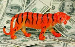 TIGER (sign of 2010 year) on d Royalty Free Stock Photos