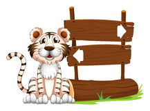 A tiger beside the signboard Royalty Free Stock Image