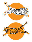 Tiger signs. Vector illustration of tiger signs Stock Photography