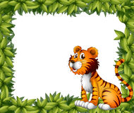 A tiger sitting in a leafy frame. Illustration of a tiger sitting in a leafy frame Royalty Free Stock Photography