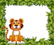 A tiger sitting in a leafy frame. Illustration of a tiger sitting in a leafy frame Stock Images