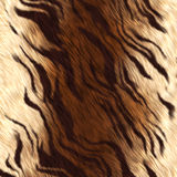 Tiger skin Stock Photography