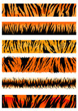 Tiger skin patterns royalty free illustration