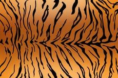 Tiger skin texture Royalty Free Stock Photos