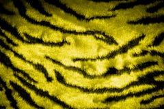 Tiger skin texture Stock Photos