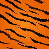 Tiger skin vector pattern. Stock Photos