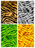 Tiger skins texture Royalty Free Stock Photos