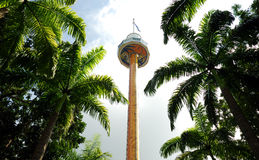 Tiger sky tower Stock Photo