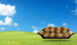 Tiger sofa on the grass field Stock Photo