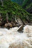 Tiger som hoppar klyftan i Kina driv vatten Royaltyfri Foto