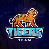 Tiger sport logo vector. Mascot design template. Football or baseball illustration. College league insignia, High School Stock Photos