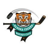 Tiger sport mascot Royalty Free Stock Photos
