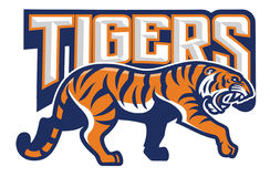 Tiger in sport mascot style Stock Photo
