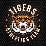 Tiger-Sportemblem des Vektors verärgertes Lizenzfreies Stockfoto