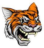 Tiger Sports Mascot Imagenes de archivo