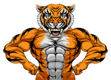 Tiger Sports Mascot forte Fotografia de Stock Royalty Free
