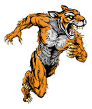 Tiger sports mascot running. A tiger man character or sports mascot charging, sprinting or running Stock Photo